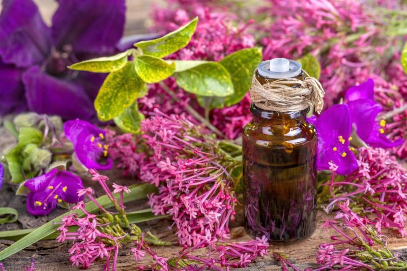 a brown glass ointment bottle surrounded by pink clary sage flowers